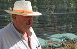 Lamberti da mezzadro ad imprenditore agricolo. Viaggio nell'agricoltura italiana