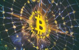 Bitcoin e Blockchain, contro le truffe corsi base per gli aspiranti trader